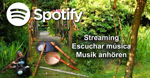 Spotify Playlists