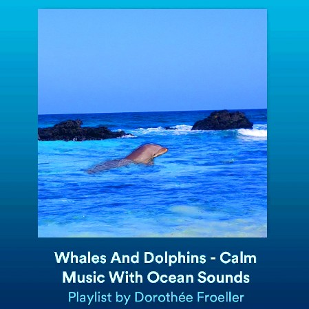 Calm Ocean Music - Spotify Playlist